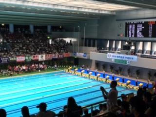 リザルト 競泳